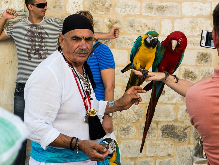 Dubrovnik Parrot | SuitcaseandHeels.com