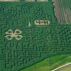 Lethbridge Corn Maze | SuitcaseandHeels.com