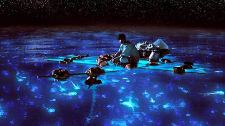 So This Is A Scene From Life Of Pi But I Swear The Bio Bays