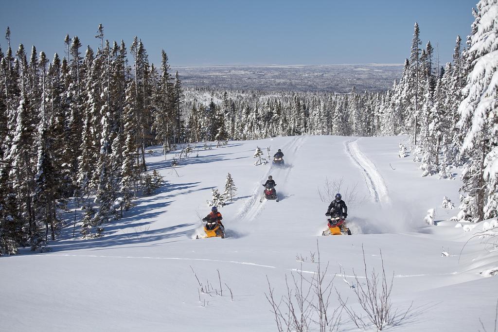 Snowmobiling in Newfoundland