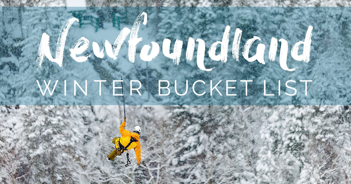 My Newfoundland Winter Bucket List 9 Things To Do To Find