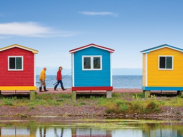 101 Things to Do in Newfoundland