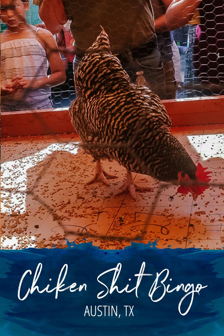 Chicken Shit Bingo in Austin, TX